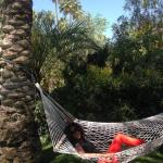 Chilling in a hammock in the gardens