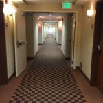 Four Points by Sheraton Sacramento International Airport Foto