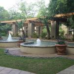 fountains in garden area