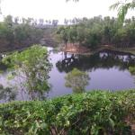 Natural Lake nearby of the resort