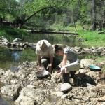 Panning on Woods Creek