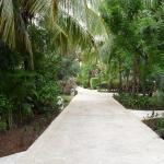 Pathway along the front of the Casitas