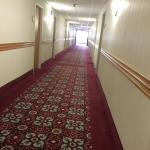Photo de BEST WESTERN Danbury/Bethel