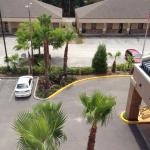 Zdjęcie Fairfield Inn & Suites Holiday Tarpon Springs
