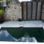 Small pool at the side of the room