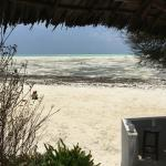 Foto de Red Monkey Beach Lodge