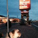 The Sign Says DOG FRIENDLY!   Nice advertising to Pet Travelers