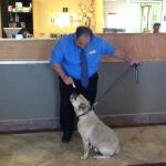 Welcome Treat for Jack upon Check-In