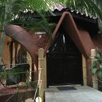 "Our private 'Dome"" built in the jungle like a elf cottage"