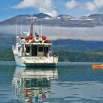 Tundra Adventure Charters - Day Tours