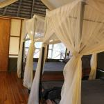 Photo de Lake Burunge Tented Camp