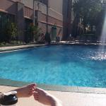 Foto Embassy Suites Hotel Tampa-USF/Near Busch Gardens
