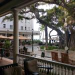 View from the rocking chairs of the beautiful banyan tree that covers the beachside bar.