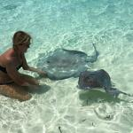 stingrays are friendly
