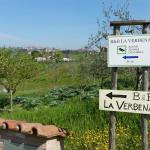 Photo of B&B La Verbena