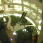 Photo de Radisson Blu Hotel New Delhi Dwarka