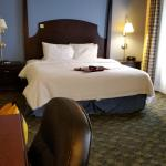 Foto di Hampton Inn & Suites Natchez