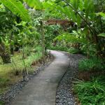 The path to the Casitas