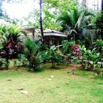 A view of the beautiful grounds by the Casitas