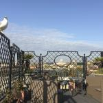 Photo de Colonna Palace Hotel
