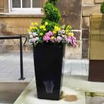 Pretty planters outside the entrance