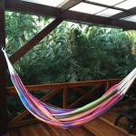 Hammock on the Patio