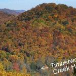 Foto di Timberwolf Creek Bed & Breakfast