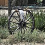 Foto de Fite Ranch Bed & Breakfast