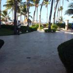 Photo de Dreams Palm Beach Punta Cana