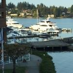 View from my room, Lake Washington