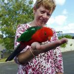 Wife with King Parrot