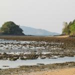 Datai Bay beach and coral reef at low tide
