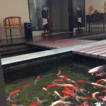 fish pond infront of the room