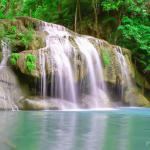 Yindee Tours -  Private Day Tours