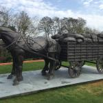 Newly added feature