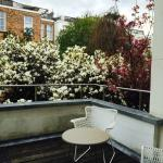 The terrace of Room 5, with the flowering magnolia and cherry trees!