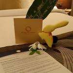 Greeting Letter with Little Rabbit