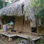 Photo of Green Bamboo Lodge