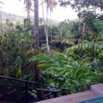 View for private pool Hilltop Papayua Cottage
