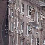 View of more Kittiwakes further in town