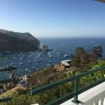 View from the patio overlooking Avalon Harbor