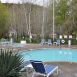 Mineral fed hot tub and swimming pool