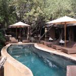 Foto di Motswiri Private Safari Lodge