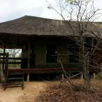 Foto di Shindzela Tented Safari Camp