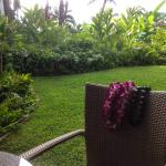 our garden itself was a mini-Hawaii with palm fronds, cane chairs & kukui-nut garlands!