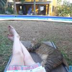 Lounging with kitty by pool area