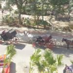 View from the balcony of the horse and carts in Parque Central