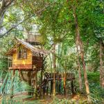 One of the treehouses