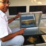 A solar box in which cooks lentils / rice is cooked