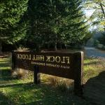 Foto de Flock Hill Lodge